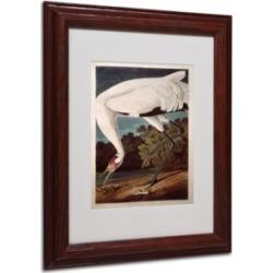 John James Audubon 'Whooping Crane' Matted Framed Art - 14