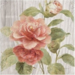 "Danhui Nai Scented Cottage Florals Iii Canvas Art - 15.5"" x 21"""