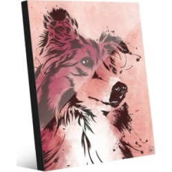 """Creative Gallery Drippy Sheltie Dog in Brown on Red 20"""" x 24"""" Acrylic Wall Art Print"""
