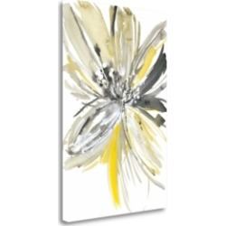 Tangletown Fine Art A Sunny Bloom by Rebecca Meyers Fine Art Giclee Print on Gallery Wrap Canvas, 20