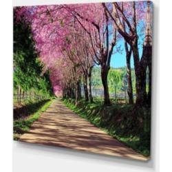 "Designart Cherry Blossom Pathway In Chiang Mai Canvas Art Print - 40"" X 30"""