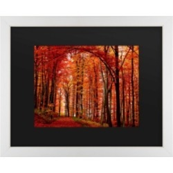 Philippe Sainte-Laudy The Red Way Matted Framed Art - 20