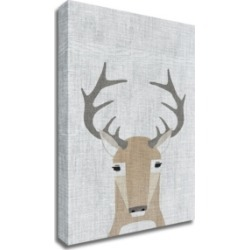 Tangletown Fine Art Whitetail Deer by Annie Bailey Art Print on Canvas, 30