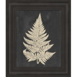 Linen Fern I by Vision Studio Framed Art found on Bargain Bro India from Macy's for $149.99