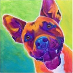 DawgArt Pit Bull Billy Canvas Art - 15.5