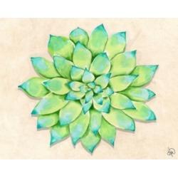 "Creative Gallery Jolly Succulent Cactus Watercolor 36"" x 24"" Canvas Wall Art Print"