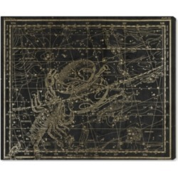 Oliver Gal Libra and Scorpio Canvas Art, 36
