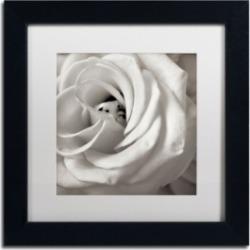 Alan Blaustein 'Florison 43' Matted Framed Art - 11