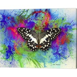 Color And Butterfly 2 By Ata Alishahi Canvas Art