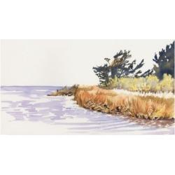 Dianne Miller Solitary Coastline Iii Canvas Art - 20