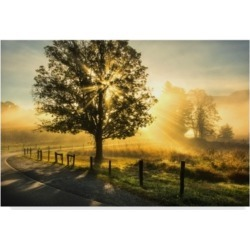 "Danny Head Wake Up Call Country Road Canvas Art - 20"" x 25"""