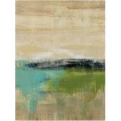 """Silvia Vassileva Spring Valley Iii Canvas Art - 20"""" x 25"""""""
