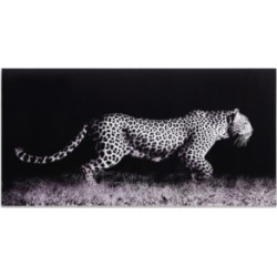 Empire Art Direct 'Fearless 1' Frameless Free Floating Tempered Glass Panel Graphic Wall Art - 24