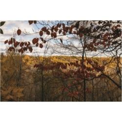 "Kurt Shaffer Photographs Autumn in the Cuyahoga Valley Canvas Art - 36.5"" x 48"""