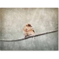 Jai Johnson 'Sparrow Braving The Cold' Canvas Art - 32