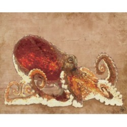 "Creative Gallery Dat Crafty Octopus in Rust 20"" x 16"" Canvas Wall Art Print"