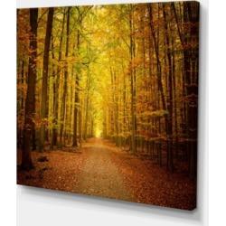 "Designart Pathway In Green Autumn Forest Photography Canvas Art Print - 40"" X 30"""