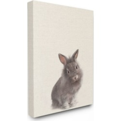 "Stupell Industries Just A Cute Bunny Canvas Wall Art, 30"" x 40"""