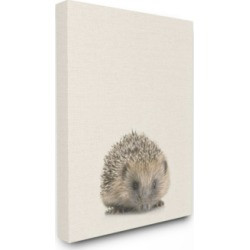 "Stupell Industries Just A Cute Hedgehog Canvas Wall Art, 30"" x 40"""