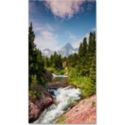 Michael Blanchette Photography Glacial Creek Canvas Art - 1