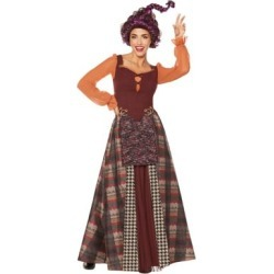 Adult Mary Sanderson Costume - Hocus Pocus - Size ADULT MEDIUM - by Spencer's