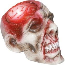 Rotten Haunted Skull Light up Brain by Spirit Halloween