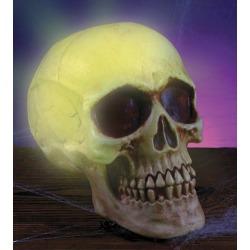 Strobe Light Skull Decoration by Spirit Halloween
