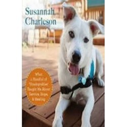 The Possibility Dogs: What a Handful of Unadoptables Taught Me about Service, Hope, and Healing