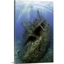 Large Solid-Faced Canvas Print Wall Art Print 20 x 30 entitled Giannis D Wreck