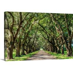 Large Solid-Faced Canvas Print Wall Art Print 30 x 20 entitled St. John the Baptist Parish. Evergreen Plantation road line...