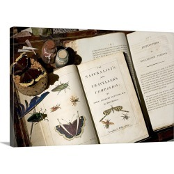 Large Gallery-Wrapped Canvas Wall Art Print 24 x 16 entitled Early naturalist collecting guide books found on Bargain Bro India from Great Big Canvas - Dynamic for $214.99