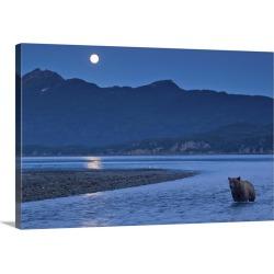 Large Gallery-Wrapped Canvas Wall Art Print 30 x 20 entitled Brown Bear And Full Moon, Katmai National Park, Alaska