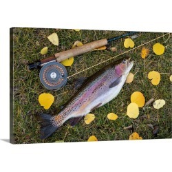 Large Solid-Faced Canvas Print Wall Art Print 30 x 20 entitled Utah, Fishlake National Forest. Rainbow trout and fly rod found on Bargain Bro Philippines from Great Big Canvas for $189.99
