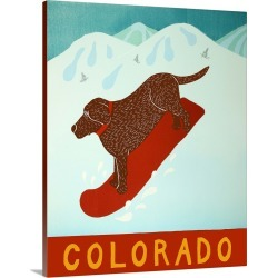 Large Solid-Faced Canvas Print Wall Art Print 24 x 30 entitled Colorado Snowboard Choc