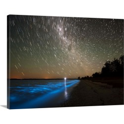 Large Gallery-Wrapped Canvas Wall Art Print 24 x 17 entitled Star trails and bioluminescence, Gippsland Lakes, Australia found on Bargain Bro India from Great Big Canvas - Dynamic for $229.99