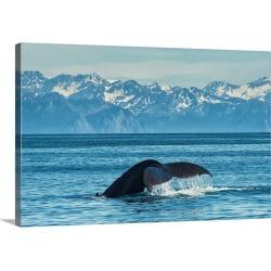 Large Gallery-Wrapped Canvas Wall Art Print 30 x 20 entitled Humpback whale in Seward harbor, Seward, Alaska, United State...