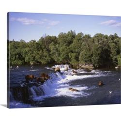 Large Gallery-Wrapped Canvas Wall Art Print 30 x 23 entitled Alaska, Katmai National Park, Brooks Falls, Alaska brown bear...
