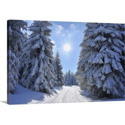 Large Solid-Faced Canvas Print Wall Art Print 30 x 20 entitled Snow Covered Winter Landscape with Ski Trail, Rennsteig, Ge...