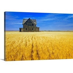 Large Gallery-Wrapped Canvas Wall Art Print 24 x 16 entitled Abandoned Farmhouse In Wheat Field, Saskatchewan, Canada found on Bargain Bro India from Great Big Canvas - Dynamic for $214.99