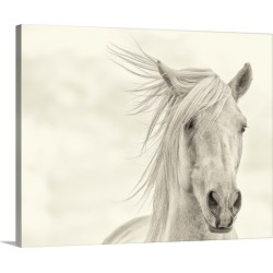 Large Solid-Faced Canvas Print Wall Art Print 30 x 24 entitled Wind Blown Mane I found on Bargain Bro Philippines from Great Big Canvas - Dynamic for $189.99