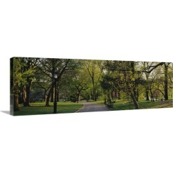 Large Gallery-Wrapped Canvas Wall Art Print 36 x 12 entitled Trees in a park, Central Park, New York City, New York State