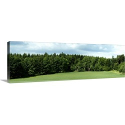 Large Gallery-Wrapped Canvas Wall Art Print 36 x 12 entitled Hunting stand in a field, Horb Am Neckar, Baden-Wurttemberg, ...