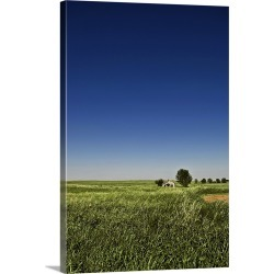 Large Solid-Faced Canvas Print Wall Art Print 20 x 30 entitled Abandoned house sits in a field in the desolate grassy plai...