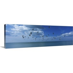 Large Gallery-Wrapped Canvas Wall Art Print 36 x 13 entitled Flock of birds flying over a sea, Gulf of Mexico, Venice, Flo...