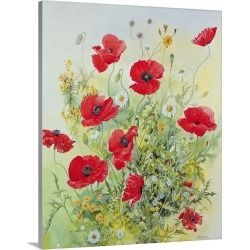 Large Solid-Faced Canvas Print Wall Art Print 36 x 45 entitled Poppies and Mayweed found on Bargain Bro Philippines from Great Big Canvas for $424.99
