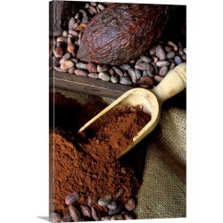Large Solid-Faced Canvas Print Wall Art Print 20 x 30 entitled Cocoa fruit, cocoa beans and powder