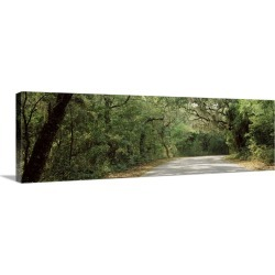 Large Gallery-Wrapped Canvas Wall Art Print 30 x 10 entitled Road Fort Clinch State Park Amelia Island FL found on Bargain Bro India from Great Big Canvas - Dynamic for $144.99