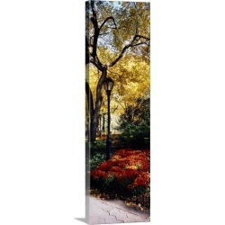 Large Gallery-Wrapped Canvas Wall Art Print 12 x 36 entitled Lamppost in a park, Central Park, Manhattan, New York City, N...