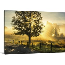 Large Gallery-Wrapped Canvas Wall Art Print 30 x 20 entitled Wake Up Call