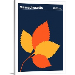 Large Solid-Faced Canvas Print Wall Art Print 30 x 40 entitled State Posters - Massachusetts State Tree: American Elm
